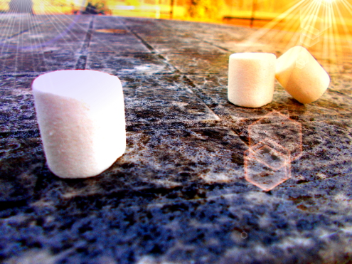 Marshmallow_Experiment_Psychologie
